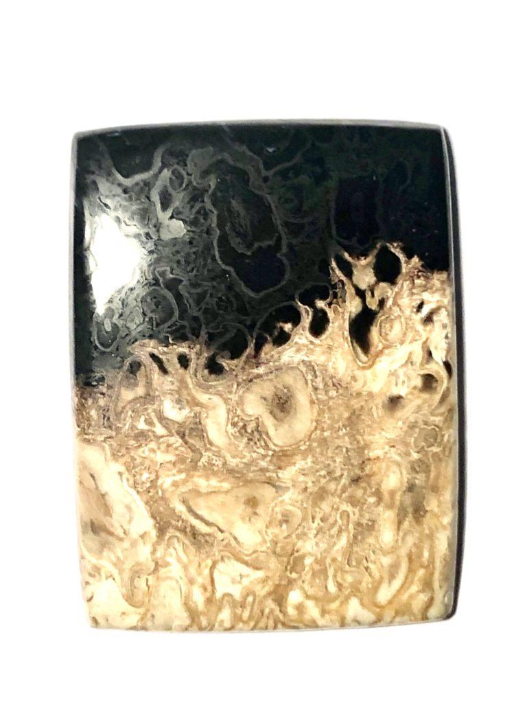 bois fossile cabochon atypique rectangle