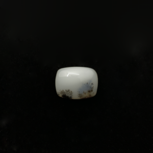 Opale Dendritique (Merlinite)