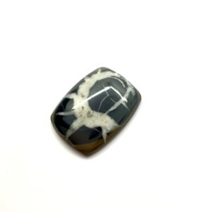 Septaria Noire