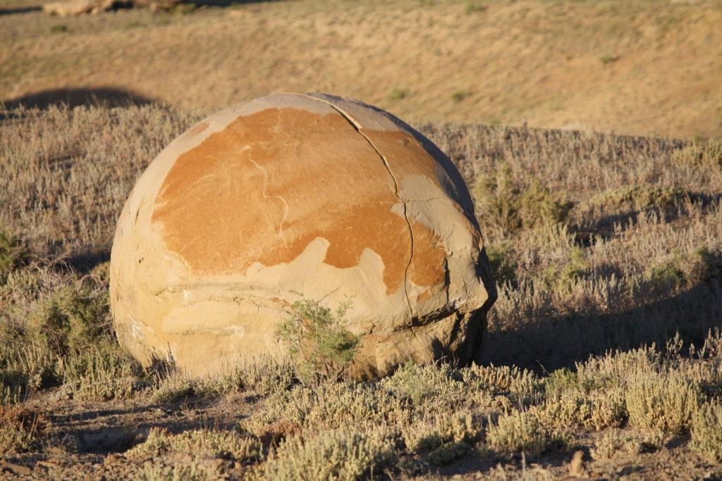 Très grande Septaria brute en forme de boule