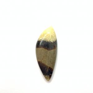 Septaria Jaune 37x15x5.5mm