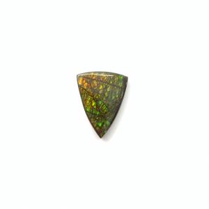 Ammolite 23.5x18x4.5mm