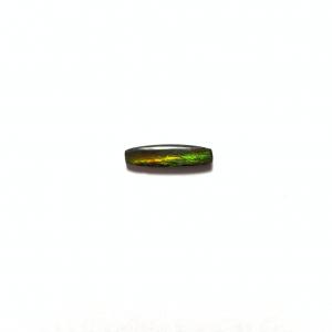 Ammolite 17×4.5x3mm
