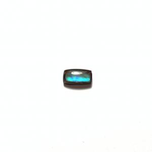 Ammolite 14×7.5×4.5mm