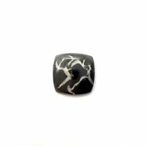 Septaria Noire 21x21x4.5mm