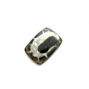 Septaria Noire 23×16.5×3.5mm