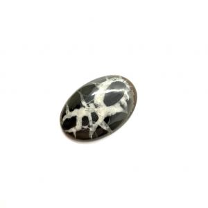 Septaria Noire 29.5×20.5×4.5mm