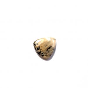 Agate Dendritique Tigre 23×20.5×4.5mm