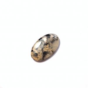 Agate Dendritique Tigre 34x21x4.5mm
