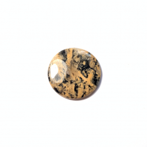 Agate Dendritique Tigre 32x32x4.5mm