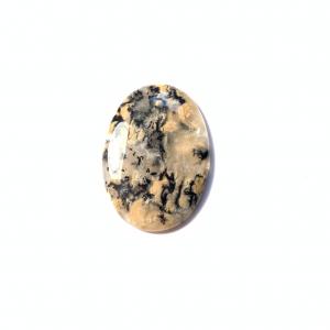 Agate Dendritique Tigre 41.5x30x5mm