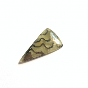 Septaria Pyrite 41x23x5.5mm