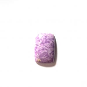 Phosphosidérite 24×16.5×5.5mm